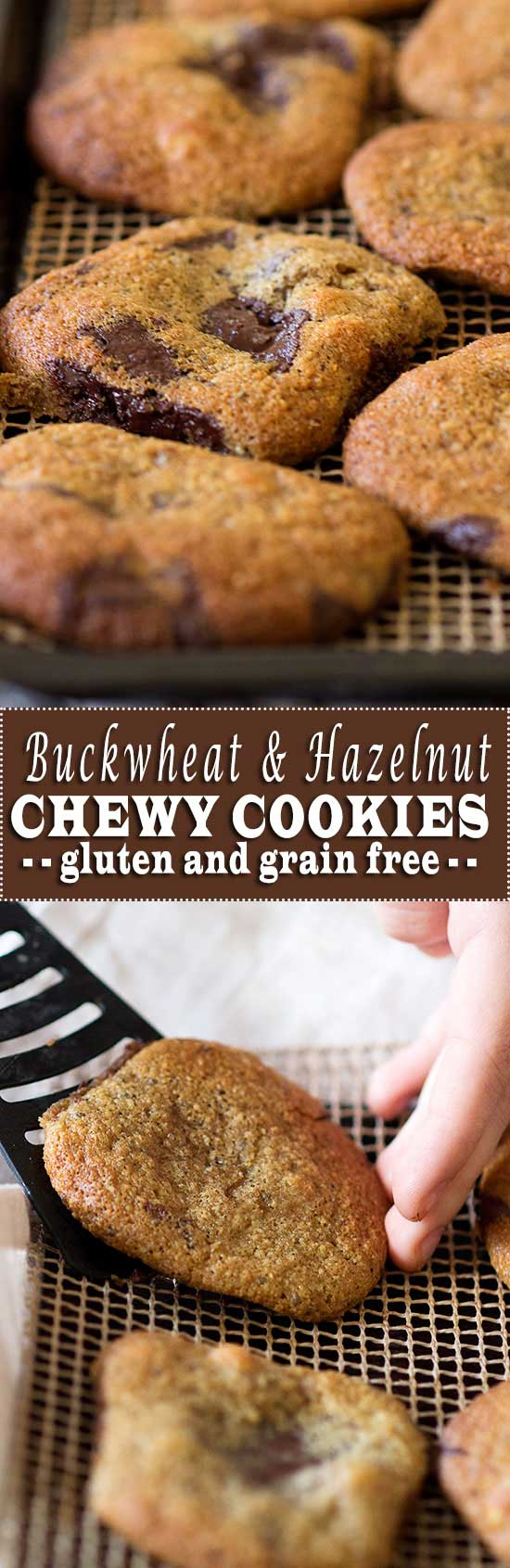 Chewy Buckwheat & Hazelnut Chocolate Chip Cookies from www.sprinkleofgreen.com #glutenfreecookies #buckwheat